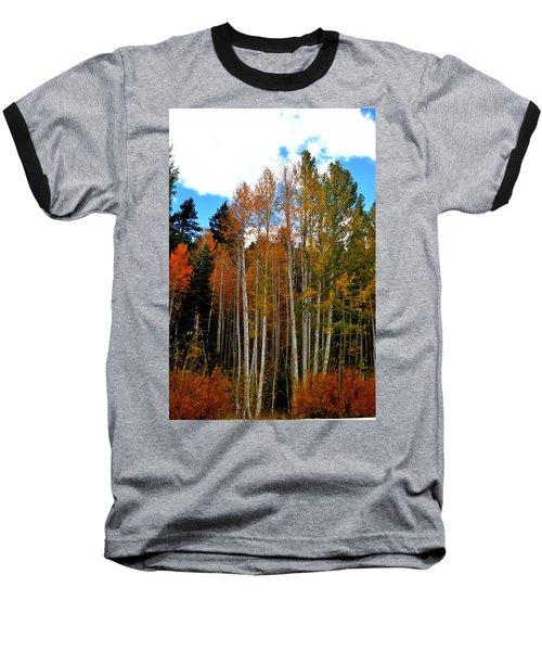 Autumn Aspens Baseball T-Shirt