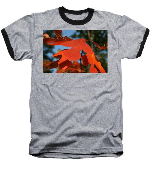 Autumn Attention Baseball T-Shirt by Neal Eslinger