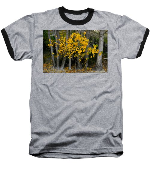 Autumn Breakout Baseball T-Shirt
