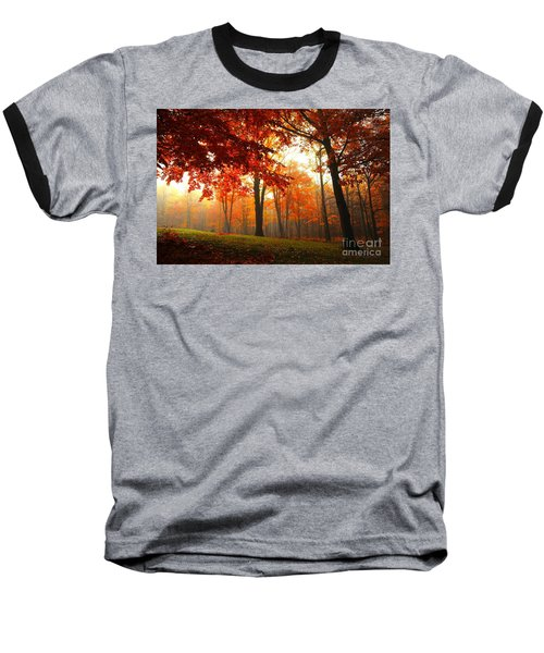 Baseball T-Shirt featuring the photograph Autumn Canopy by Terri Gostola