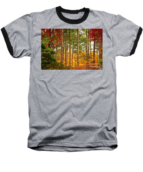 Autumn Canvas Baseball T-Shirt