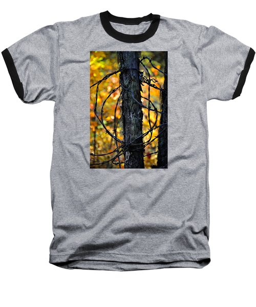 Baseball T-Shirt featuring the photograph Autumn Colors 1 by Newel Hunter