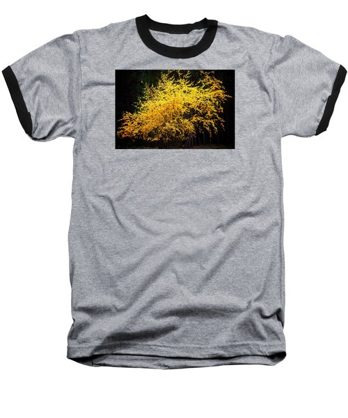 Baseball T-Shirt featuring the photograph Autumn Colors 4 by Newel Hunter