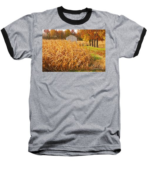 Autumn Corn Baseball T-Shirt by Mary Carol Story