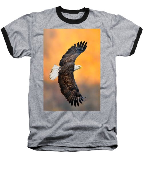 Autumn Eagle Baseball T-Shirt