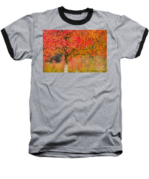Autumn Fire Baseball T-Shirt