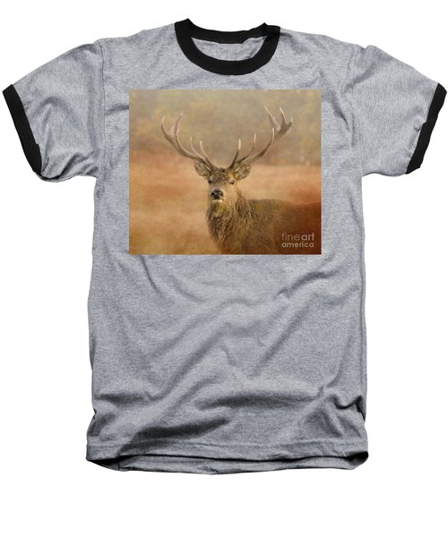 Magnificant Stag Baseball T-Shirt
