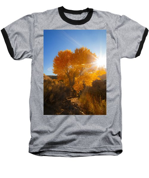 Autumn Golden Birch Tree In The Sun Fine Art Photograph Print Baseball T-Shirt