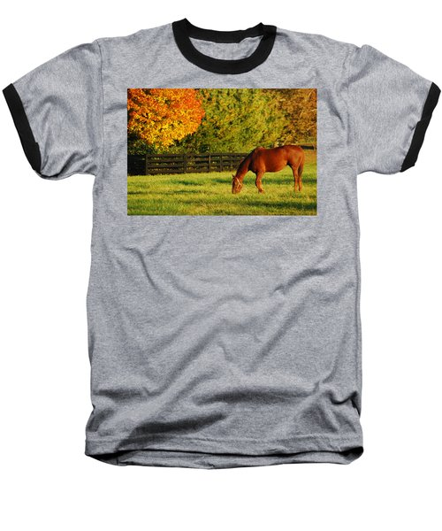 Autumn Grazing Baseball T-Shirt