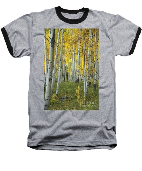 Autumn In The Aspen Grove Baseball T-Shirt by Juli Scalzi