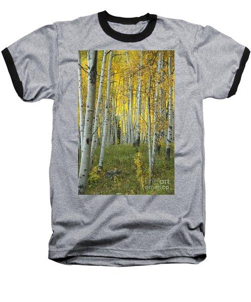Autumn In The Aspen Grove Baseball T-Shirt