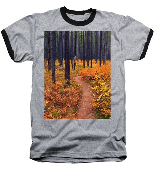 Autumn In Yellowstone Baseball T-Shirt