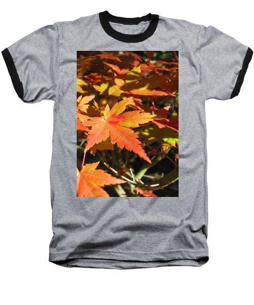 Autumn Leaves 9 - Autumn Leaves Macro Baseball T-Shirt