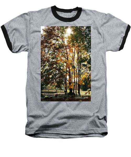Autumn Light Baseball T-Shirt by Barbara Bardzik
