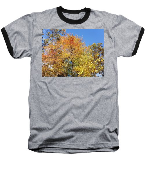 Baseball T-Shirt featuring the photograph Autumn Limbs by Jason Williamson