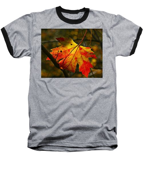 Autumn Maple Leaf Baseball T-Shirt by Richard Engelbrecht