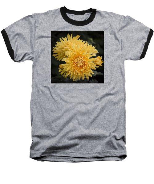 Baseball T-Shirt featuring the photograph Autumn Mums by Julie Palencia