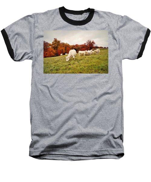 Autumn Pastures Baseball T-Shirt