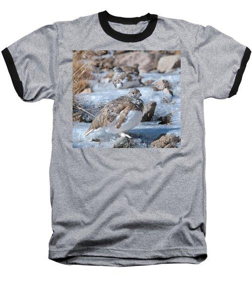Autumn Plumage White-tailed Ptarmigan Baseball T-Shirt