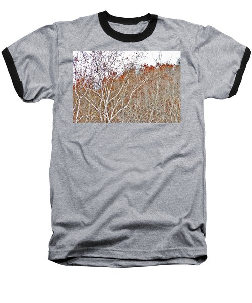 Autumn Sycamores Baseball T-Shirt