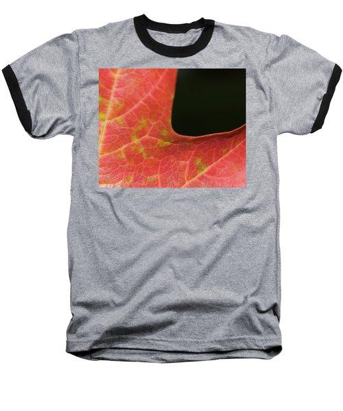 Autumn  Baseball T-Shirt by Tara Lynn