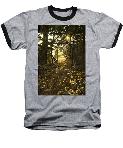 Baseball T-Shirt featuring the photograph Autumn Trail In Woods by Yulia Kazansky