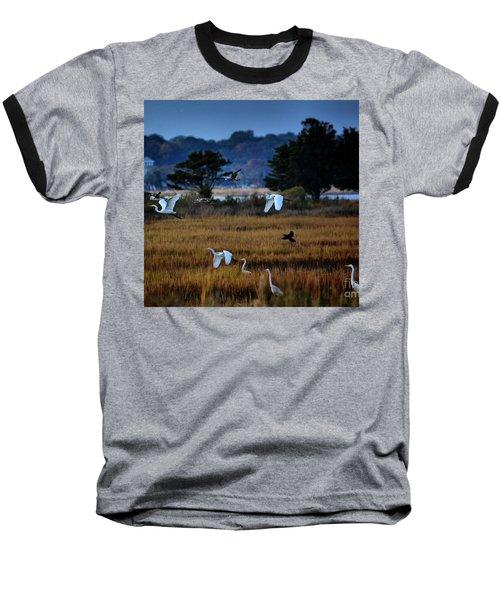 Aviary Convention Baseball T-Shirt by Robert McCubbin