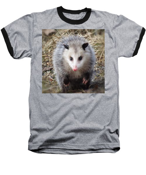 Awesome Possum Baseball T-Shirt