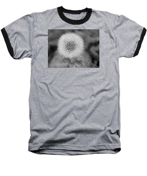 B And W Seed Head Baseball T-Shirt by David T Wilkinson