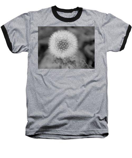 B And W Seed Head Baseball T-Shirt