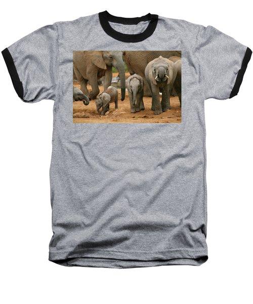 Baby African Elephants Baseball T-Shirt