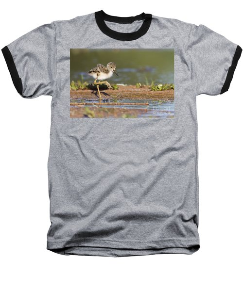 Baby Black-necked Stilt Exploring Baseball T-Shirt