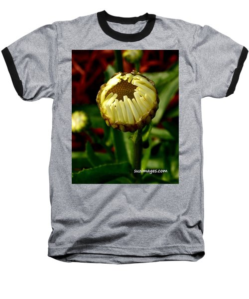 Baby Daisy Baseball T-Shirt