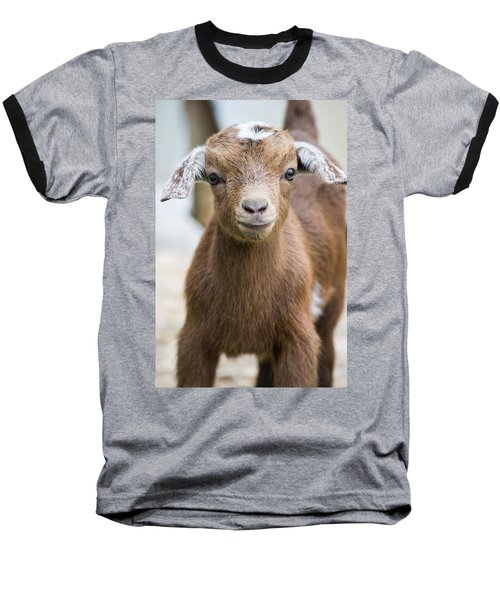 Baby Goat Baseball T-Shirt by Shelby  Young