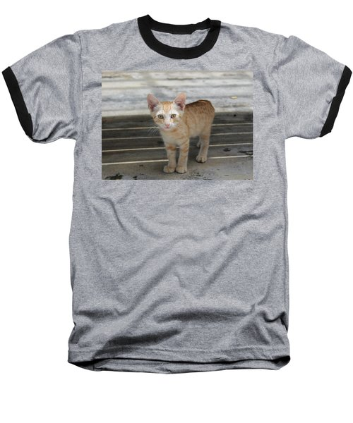 Baby Kitty Baseball T-Shirt