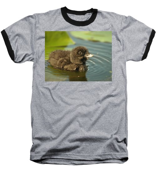 Baseball T-Shirt featuring the photograph Baby Loon by James Peterson