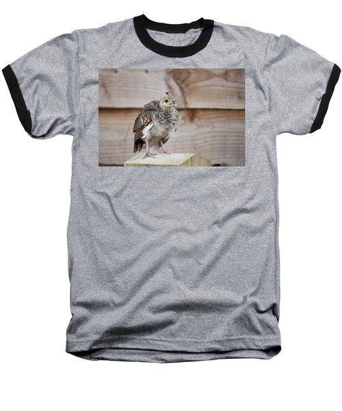 Baby Peacock Baseball T-Shirt