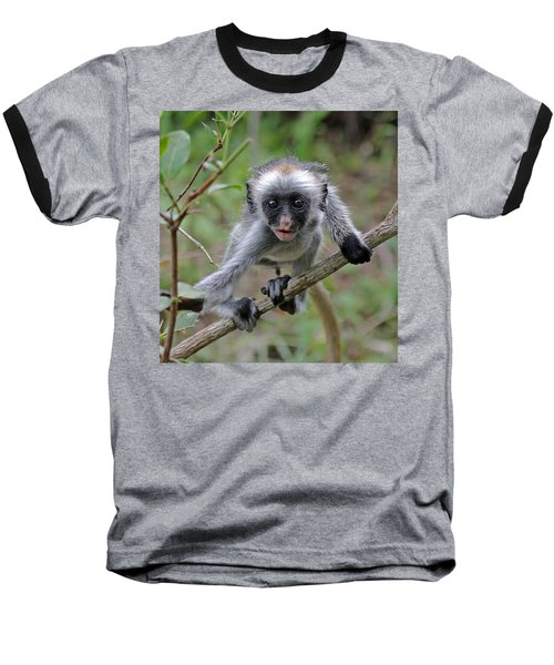 Baby Red Colobus Monkey Baseball T-Shirt