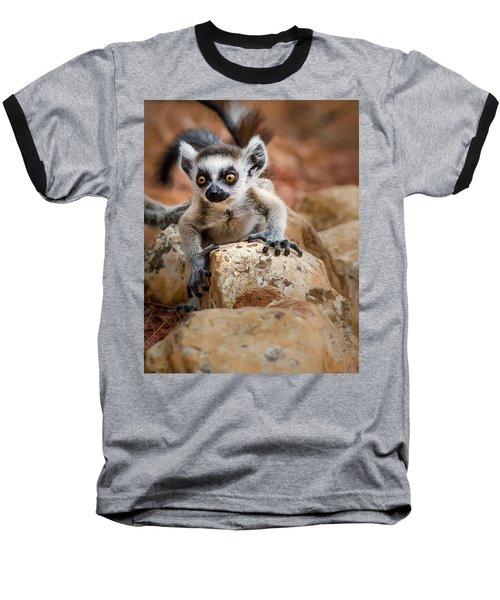 Baby Ringtail Lemur Baseball T-Shirt