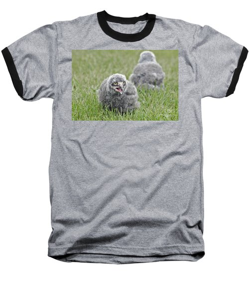 Baby Snowy Owls Baseball T-Shirt by JT Lewis