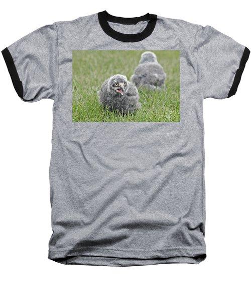 Baby Snowy Owls Baseball T-Shirt