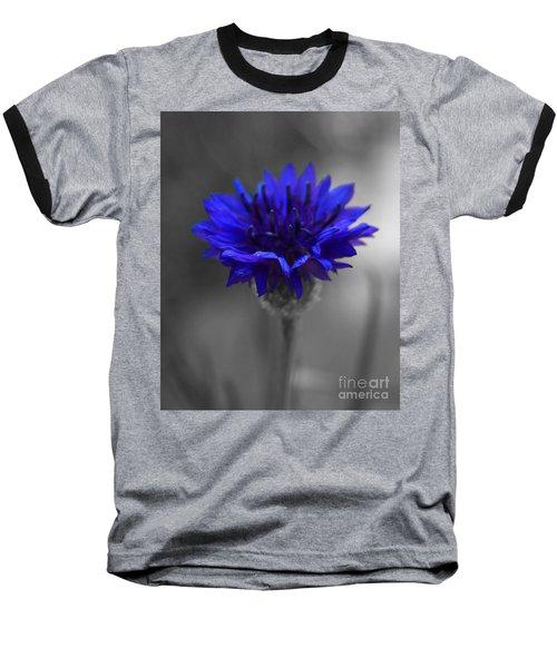 Bachelor's Button Baseball T-Shirt