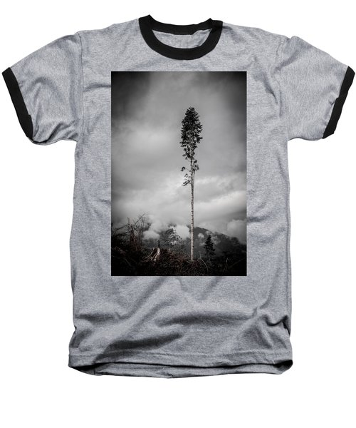 Lone Tree Landscape  Baseball T-Shirt