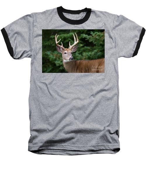 Backward Glance Baseball T-Shirt