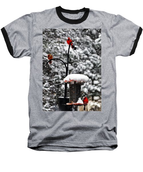 Backyard Winter Wonderland 2  Baseball T-Shirt