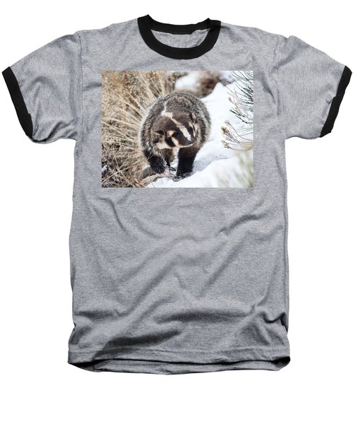 Badger In The Snow Baseball T-Shirt