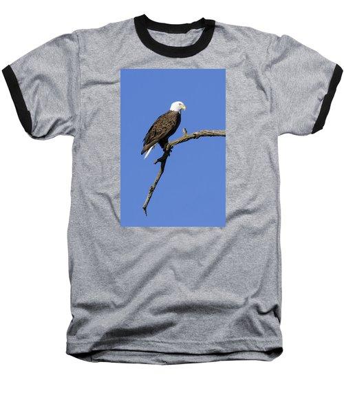 Bald Eagle 4 Baseball T-Shirt