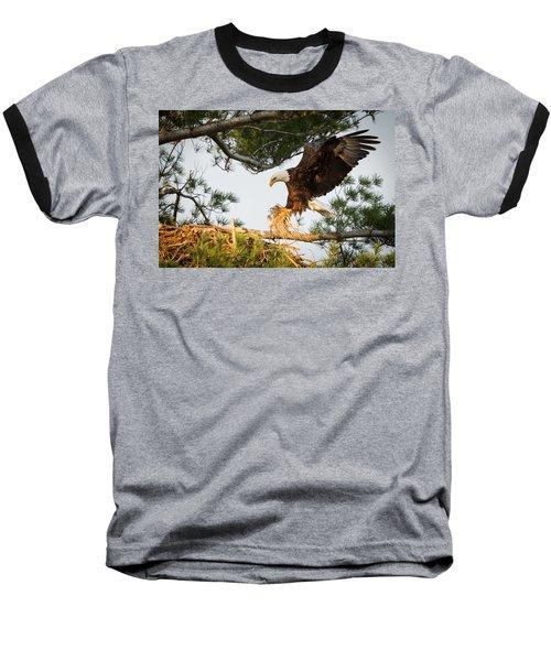 Bald Eagle Building Nest Baseball T-Shirt by Everet Regal