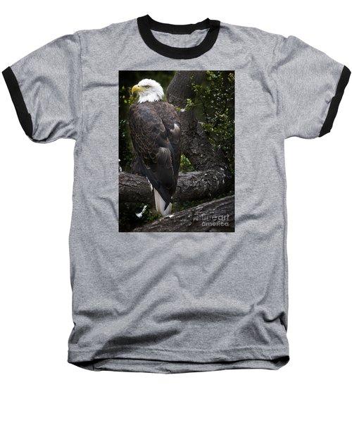 Bald Eagle Baseball T-Shirt by David Millenheft