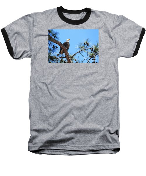 Baseball T-Shirt featuring the photograph Bald Eagle by Geraldine DeBoer